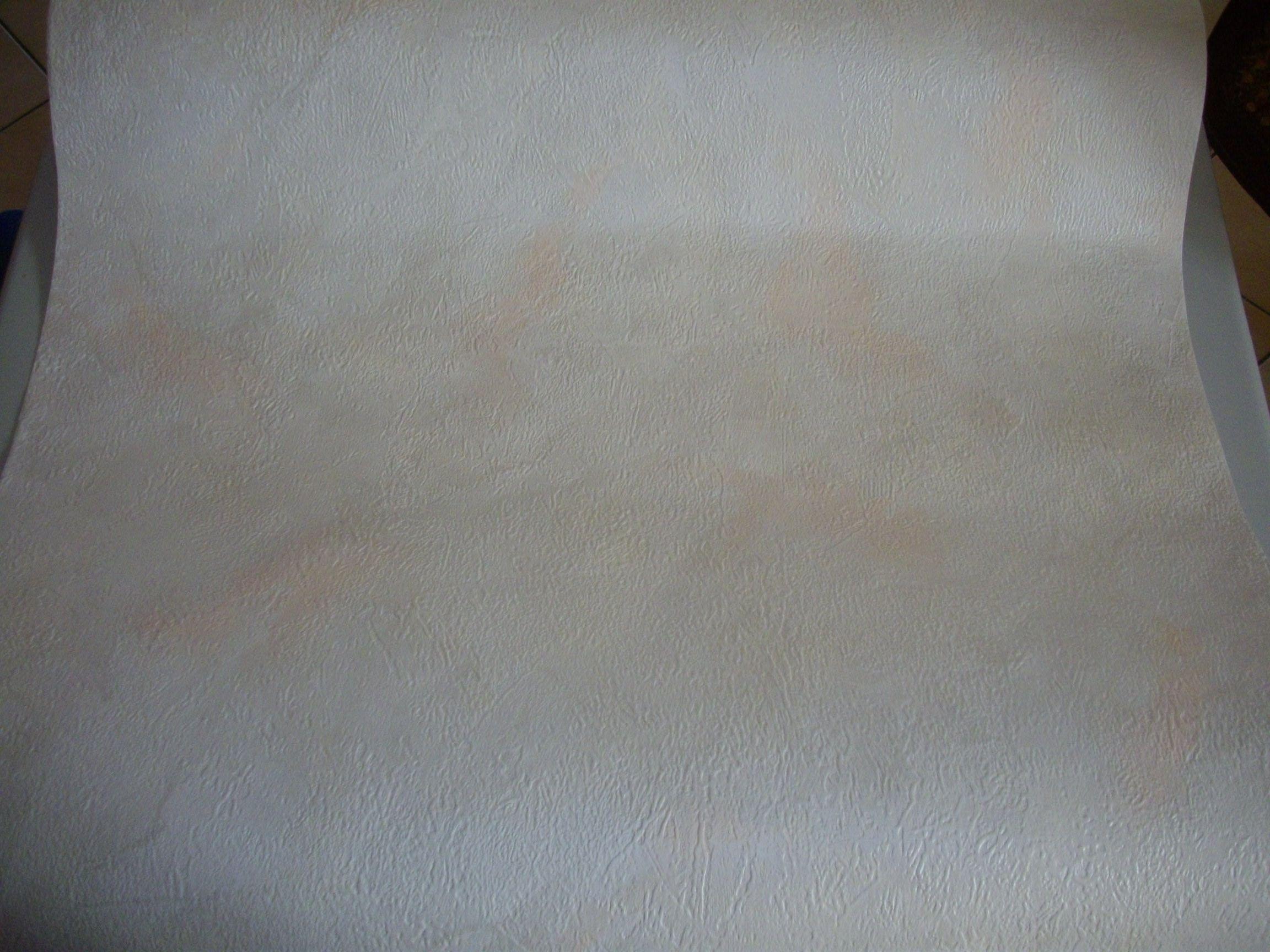 Mon papier peint de la salle manger for Papier peint salle a manger